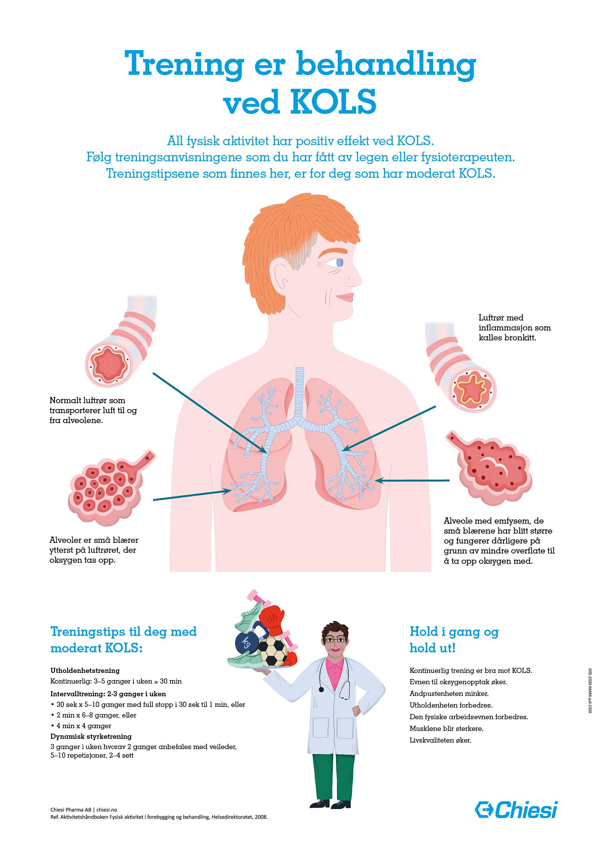 lunge--og-treningsinformasjon-ved-kols-for-sykemottaket--28a3-29.jpg